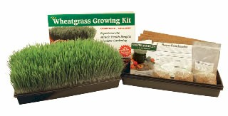 Handy Pantry Wheatgrass Kit