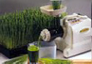 Samson Wheatgrass Juicer